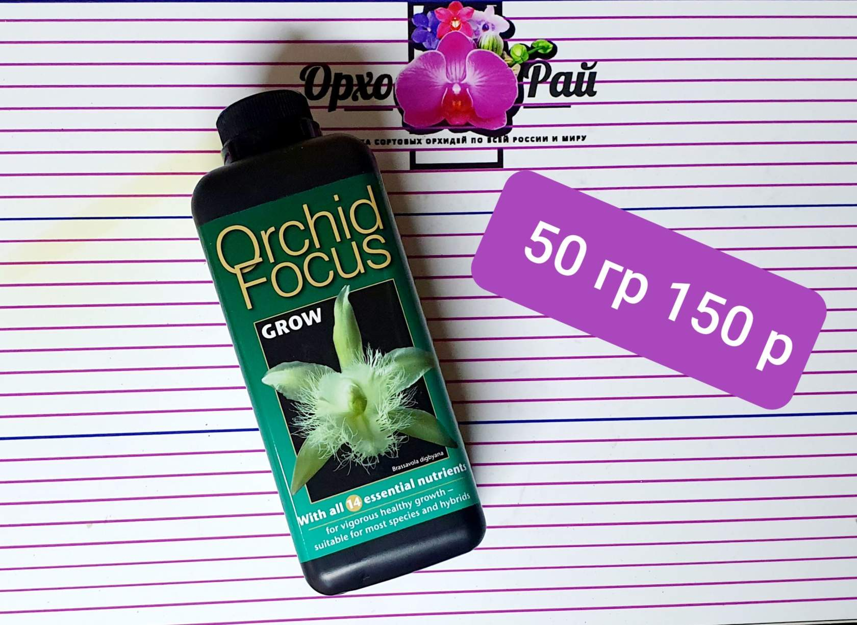 Orchid Focus Grow